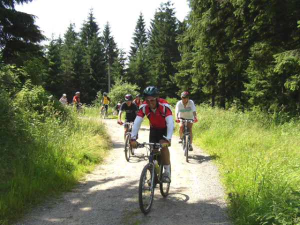 cykliste na lesni ceste