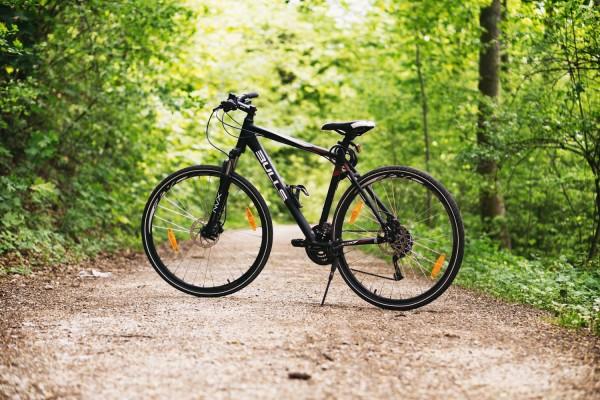 forrest-bike1
