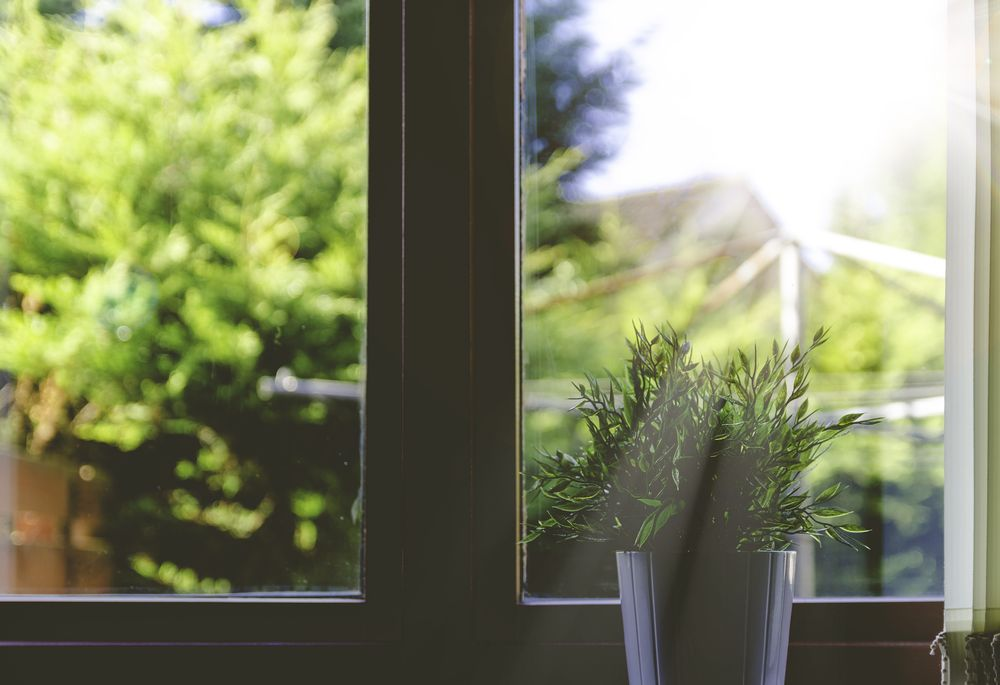 window-wood-nature
