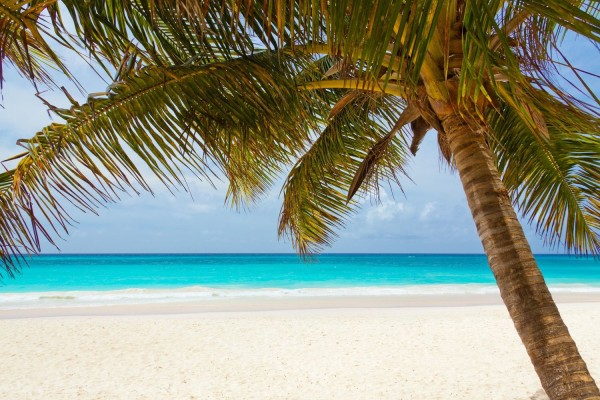 beach-landscape-nature-40976