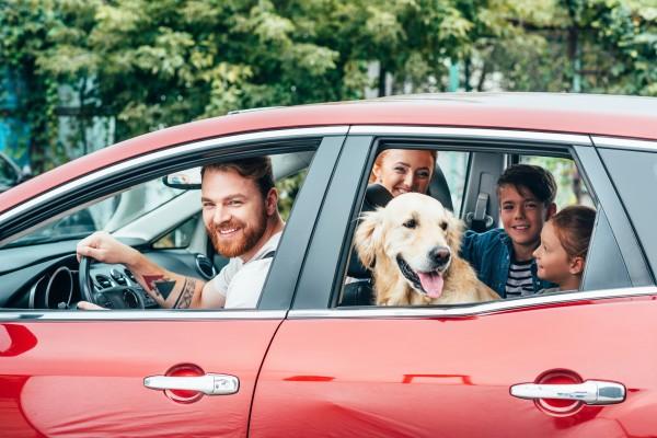 Svět v bezpečí - Chystáte se v druhé polovině prázdnin na dovolenou autem? Ani při cestách po Česku nepodceňte jeho kontrolu